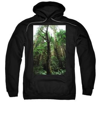 Groovin With The Redwoods Sweatshirt