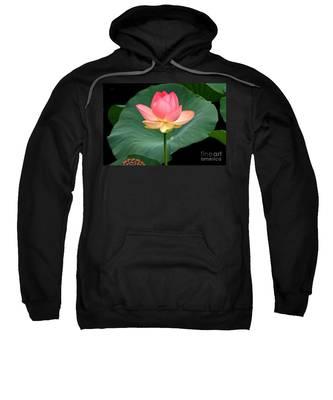 Lotus Of Late August Sweatshirt