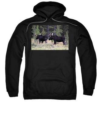 Only A Step Behind Sweatshirt
