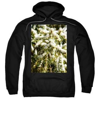 Snowy Pines Sweatshirt