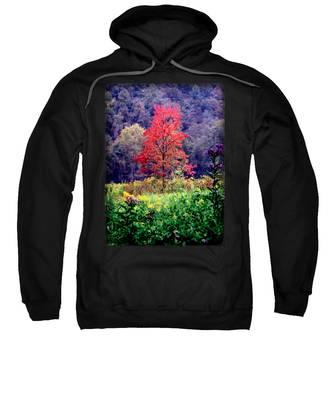 Wildwood Flowers Sweatshirt
