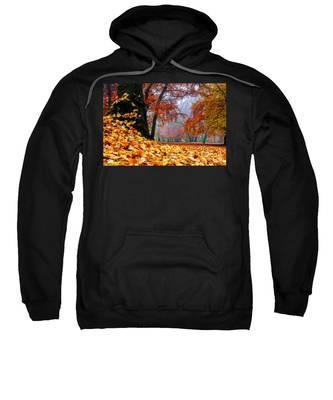 Autumn In The Woodland Sweatshirt