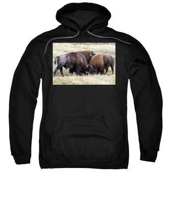 Bison Fight Sweatshirt