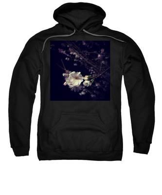 Cherryblossom Hooded Sweatshirts T-Shirts