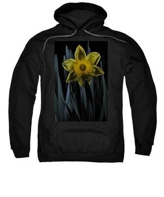 Daffodil By Moonlight Sweatshirt
