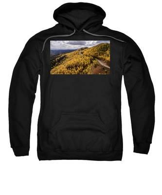 Fall Drive Sweatshirt