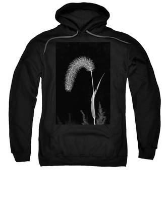 Fall Grass 1 Sweatshirt