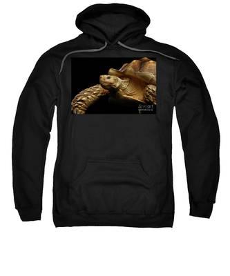 Cantabria Hooded Sweatshirts T-Shirts