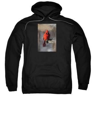 Just An Ordinary Day Sweatshirt