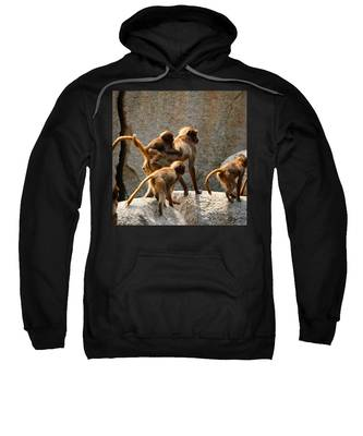 Brown Hooded Sweatshirts T-Shirts