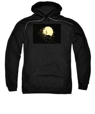 Moonglow Thistles Sweatshirt