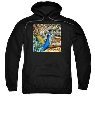 Proud As A Peacock Sweatshirt