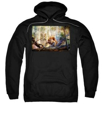 Red Squirrel With Pinecone Sweatshirt