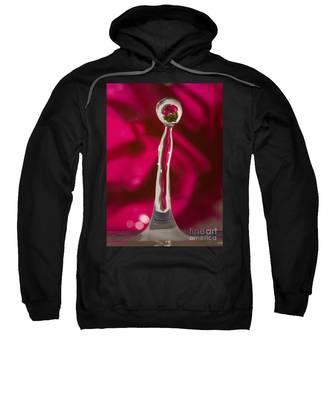 Rose Relection Sweatshirt