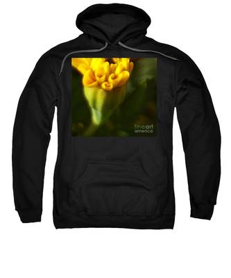 So Much More Sweatshirt