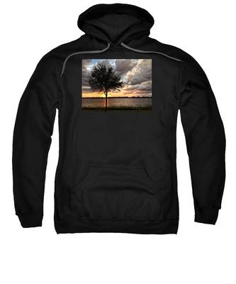 Sunset Tree Sweatshirt