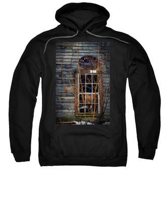 Window Shopping Sweatshirt