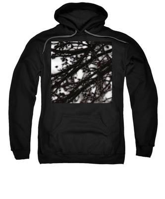 Winter Rain Sweatshirt
