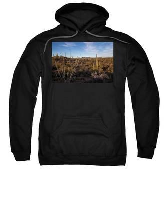 Ocotillo Twilight Sweatshirt by Lon Dittrick