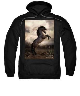 The Bay Horse Sweatshirt