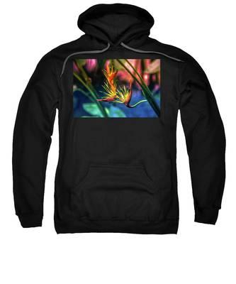 Vibrant Jungle Bird Sweatshirt
