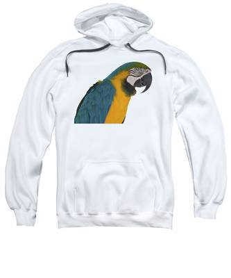 Blue Gold Macaw Sweatshirt