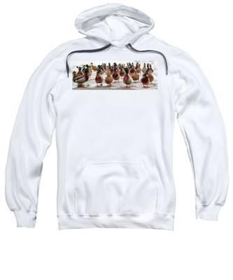 Duckorama Sweatshirt