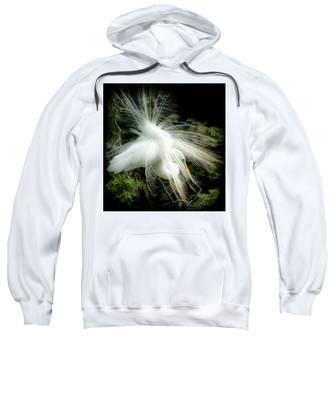 Elegance Of Creation Sweatshirt