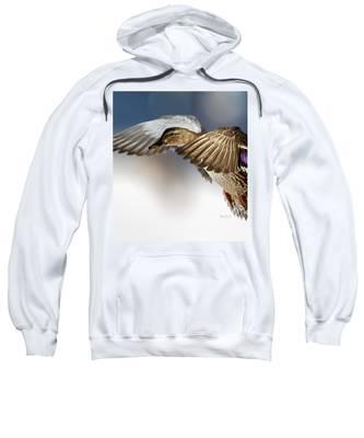 Flight Of The Mallard Sweatshirt