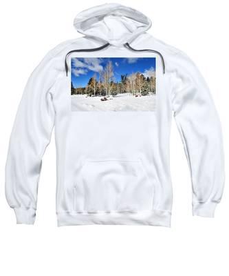 Snowy Aspen Grove Sweatshirt