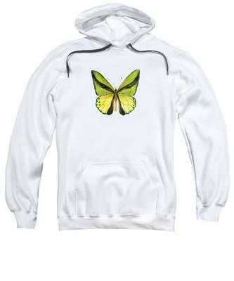 8 Goliath Birdwing Butterfly Sweatshirt