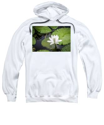 Another Lily Sweatshirt