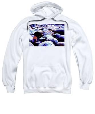 Cool Rocks- Sweatshirt
