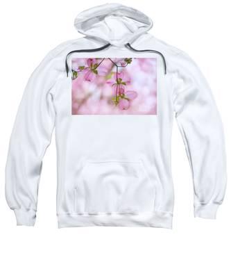 Dogwood Sunset Sweatshirt