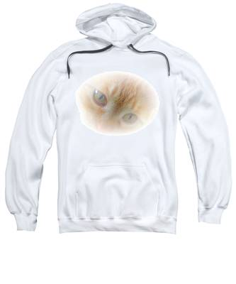 Sweatshirt featuring the photograph Magic Eyes by Judy Kennedy
