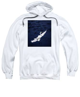Windy Flight Sweatshirt