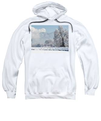 Snow Hooded Sweatshirts T-Shirts