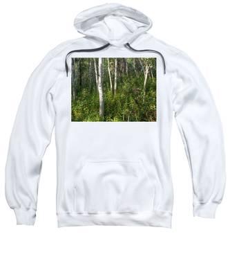 Aspen Solitude Sweatshirt by Lon Dittrick