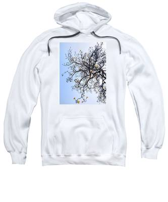 Autumn Hooded Sweatshirts T-Shirts