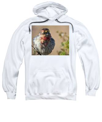 Sweatshirt featuring the photograph Rare Multicolored Male House Finch by Judy Kennedy