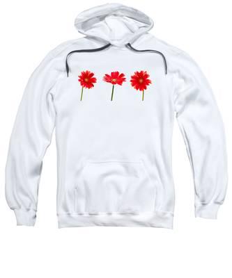 Gerberas Hooded Sweatshirts T-Shirts