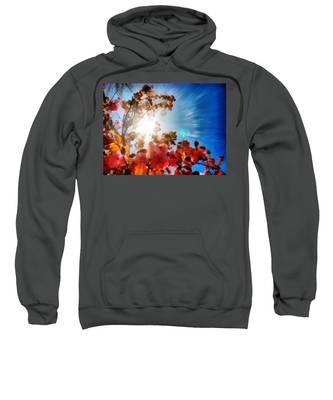 Sweatshirt featuring the painting Blooming Sunlight by Derek Gedney