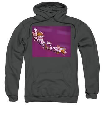 Cherry Blossoms And Plum Door Sweatshirt