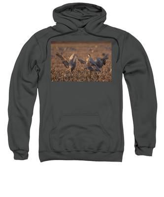 Dancing Sandhills Sweatshirt