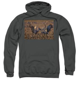 Kissing Sandhills Sweatshirt