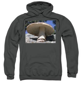 Large Mushroom Sweatshirt