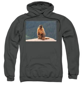 Mother Marmot Sweatshirt