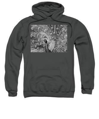 Mother Natures Fireworks Sweatshirt