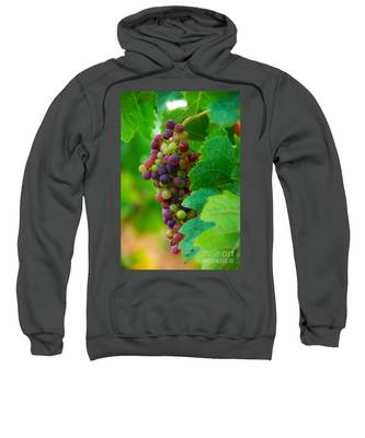 Red Grapes Sweatshirt