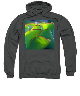 South African Beauty Sweatshirt